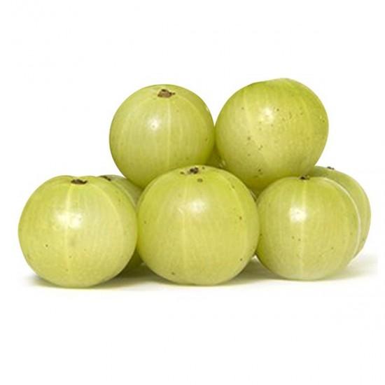 Gooseberry (Nellikka)