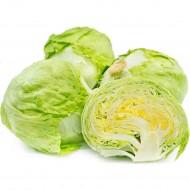 Iceberg Salad Leaf