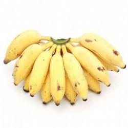 Banana Njalipoovan